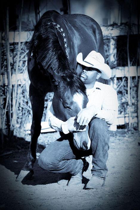 hugging horse